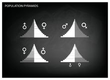 Detail of Population Pyramids Graphs Depend on Age and Sex. Population and Demography, Illustration of Detail of Population Pyramids Chart or Age Structure Graph royalty free illustration