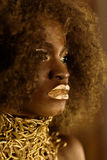 Detail portrait of an African American woman with golden makeup and accessories Stock Photos