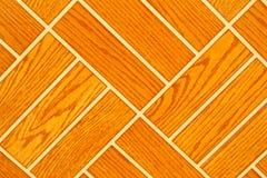 Detail of Portuguese glazed tiles. Stock Images