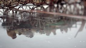 Detail of puddle with reflection of cart of clay pots and  falling raindrops stock video