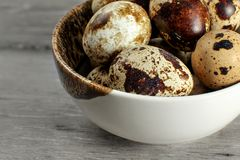 Detail on quail eggs in small bowl. royalty free stock photography