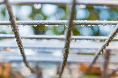 Detail of raindrops on metal fence in winter Stock Photo