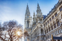 Detail of Rathaus of Vienna during winter Christmas market Royalty Free Stock Images