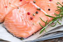 Detail of Raw Salmon Fish Fillet with Spices and Fresh Herbs Royalty Free Stock Photo