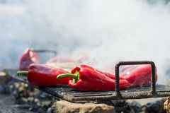 Detail of red chilies frying on barbecue Royalty Free Stock Images