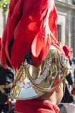 Feathered helmet. Detail of a red feathered helmet of a musician Royalty Free Stock Photos