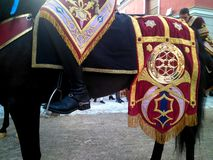 Detail of red and gold embroidery on the rump of a horse royalty free stock image