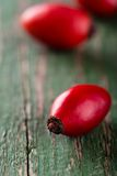 Detail of red hip on green wooden board with worn surface stock photography