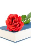 Detail of red rose on the closed book Royalty Free Stock Images