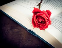 Detail of red rose on the open book with space for text, old style Royalty Free Stock Images
