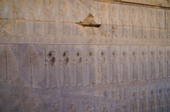 Detail of a relief of the eastern stair,Persepolis, Iran. Stock Photography