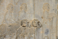 Detail of a relief in Persepolis in Iran Royalty Free Stock Images