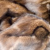 Detail retro mink coat square. Close-up of design of a Furry mahogany art deco and retro mink coat with details of the fur with hairs and cuticles layered in Stock Photos