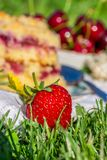 Detail of ripe red strawberry in front of cherry cake on white towel in grass Royalty Free Stock Photography