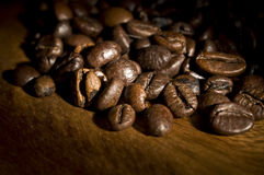 Detail of roasted coffee beans Stock Images