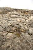Detail of rock coastside Royalty Free Stock Photos