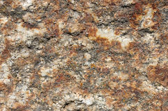 Detail of a rock. Detail of the different minerals that make up a rock Stock Photography