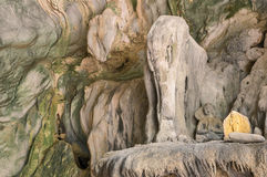 Detail of rock formation at Elephant Cave in Vang Vieng. Detail of rock formation which gives the name to Elephant Cave ( Tham Sang ) near Vang Vieng - Exploring Stock Photo