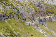 Deatil of Rocks from the Circus of Troumouse - Pyrenees Mountain Royalty Free Stock Image