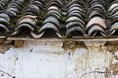 Detail of roof clay tiles Royalty Free Stock Photography
