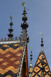 Detail of the Roofs of Hotel Dieu Royalty Free Stock Images