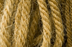 Detail of the rope Stock Image