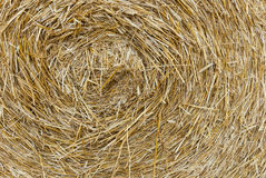 Detail of a round bale of straw Stock Photos