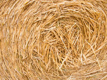 Detail of a round bale of straw Royalty Free Stock Photo