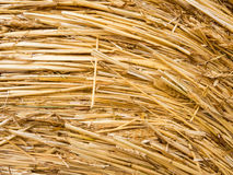 Detail of a round bale of straw Royalty Free Stock Photos