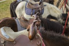 Detail of a saddle for pony with background Stock Photo