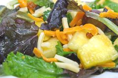 Detail of a salad. In a bowl Royalty Free Stock Photos