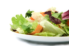 Detail salad dish Royalty Free Stock Photo