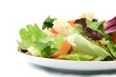 Detail salad dish Royalty Free Stock Photo
