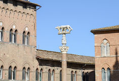 Detail of Salimbeni palace and Lupa Senese sculpture Royalty Free Stock Photography