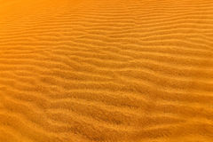 Detail of sand dune in desert. Summer dry landscape in Africa. Sand waves in the wild nature. Dunas Maspalomas, Gran Canaria, Spai Royalty Free Stock Photos