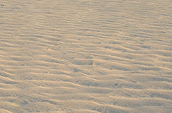 Detail of sand. Detail of the sand in the dunes of Corralejo (Fuerteventura, Canary Islands Stock Photography