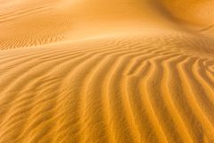 Detail of sand dunes. In the desert royalty free stock photos
