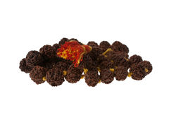 Detail of Sandalwood Mala Royalty Free Stock Images