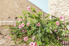 Detail from Santa Barbara Castle, Alicante Spain Stock Photography