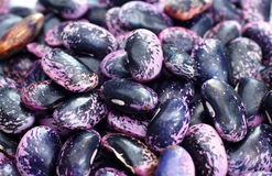 Detail, scarlet runner beans, dried Stock Photos