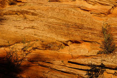 Detail of sedimentary sandstone layers Stock Photography