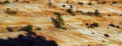 Detail of sedimentary sandstone layers Royalty Free Stock Images