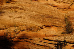 Detail of sedimentary sandstone layers Royalty Free Stock Photo