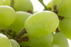 Detail seeless grapes Royalty Free Stock Images