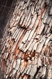 Detail of a shattered old wood Stock Image