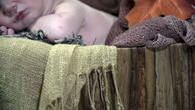 Detail shot going grom hedgehog to calm baby's face stock video