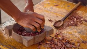 Detail Shot Of Hands Grinding Cocoa Beans With A Mortar. In Ecuador stock video