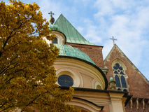 Detail shot of the rear of Wroclaw Cathedral. Detail shot of the rear of Wroclaw Cathedral with yellow and golden leaves of a nearby tree in the autumn royalty free stock photography