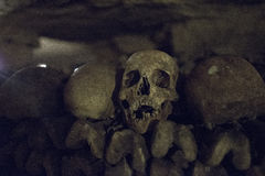 Detail of Skull in Paris Cataombs royalty free stock photos