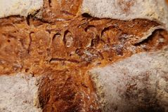 Detail of slash in a loaf of artisanal bread. Showing the structure of the crust and the dusting of flour Royalty Free Stock Images